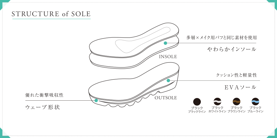 STRUCTURE of SOLE